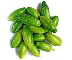ivy-little-gourd