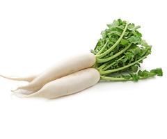 white-radish